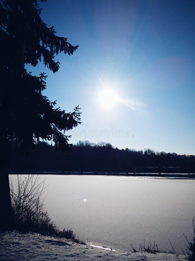 замороженный взгляд озера стоковое изображение