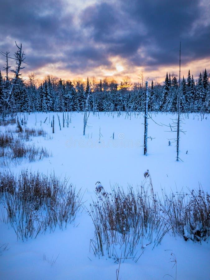 Замороженный водораздел на восходе солнца в зиме стоковая фотография rf