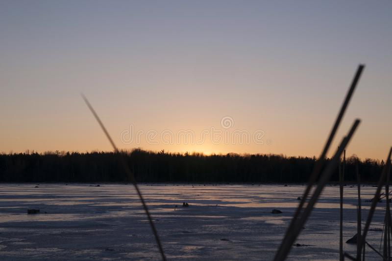 замороженный восход солнца стоковые фотографии rf
