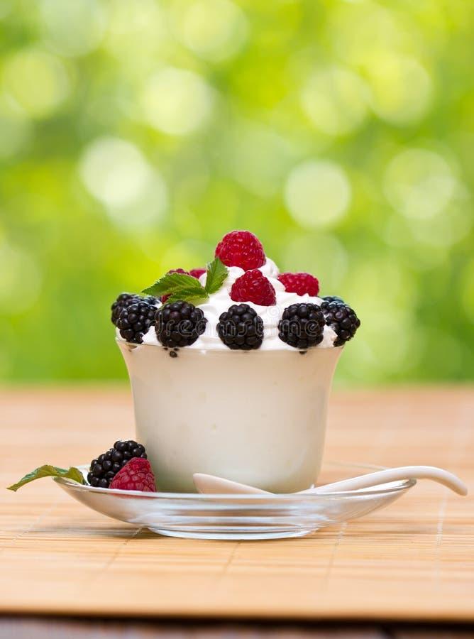Замороженный йогурт стоковая фотография
