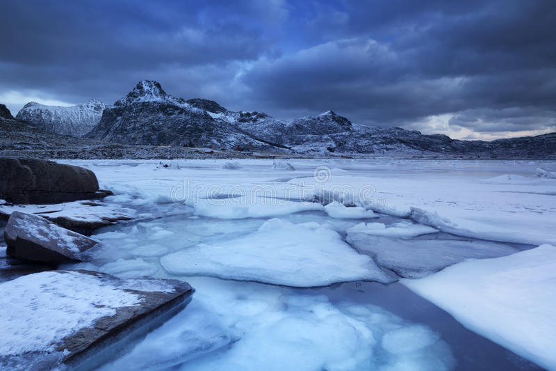 Замороженный фьорд на Lofoten в северной Норвегии в зиме стоковое фото rf