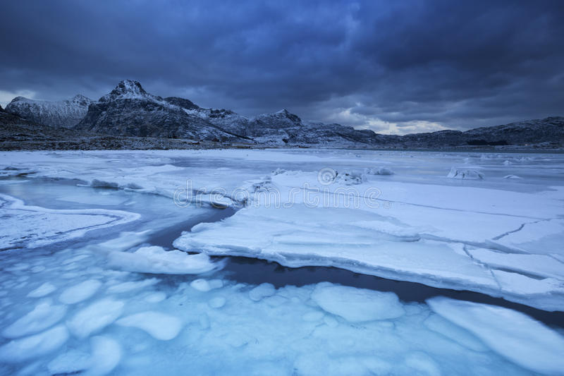 Замороженный фьорд на Lofoten в северной Норвегии в зиме стоковые изображения