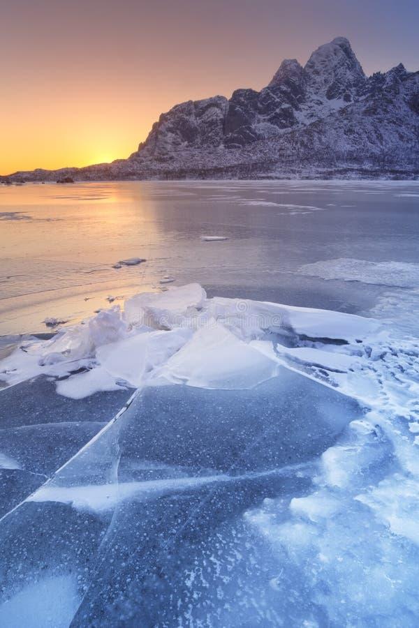 Замороженный фьорд на Lofoten в северной Норвегии стоковые фотографии rf