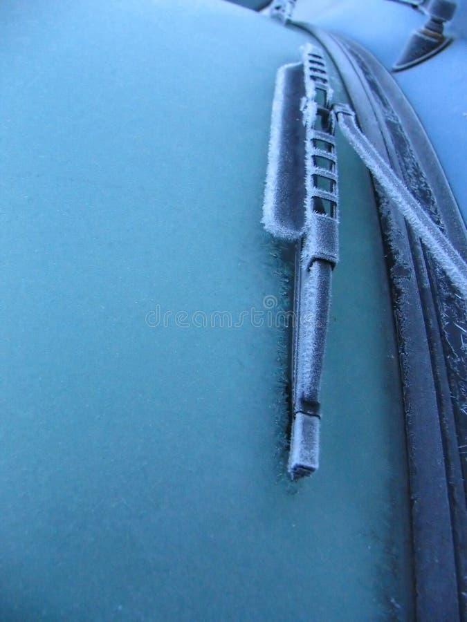 замороженный windscreen стоковые фотографии rf