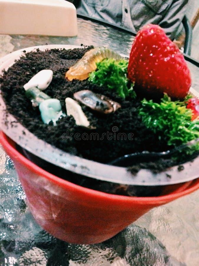 Заморозьте бак с печеньем клубники и шоколада на стеклянном столе стоковое изображение rf