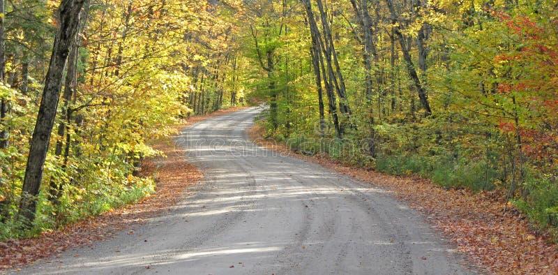 Download замотка проселочной дороги стоковое фото. изображение насчитывающей пуща - 6869482