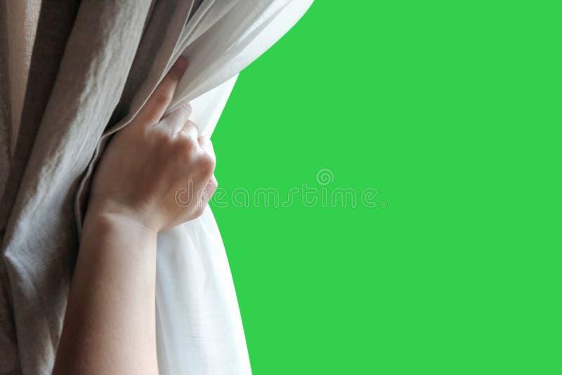 Занавесы отверстия руки женщины в спальне с зеленой предпосылкой экрана стоковые изображения