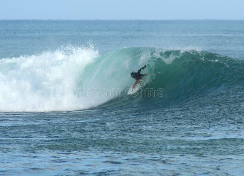 заниматься серфингом Гавайских островов стоковые фото