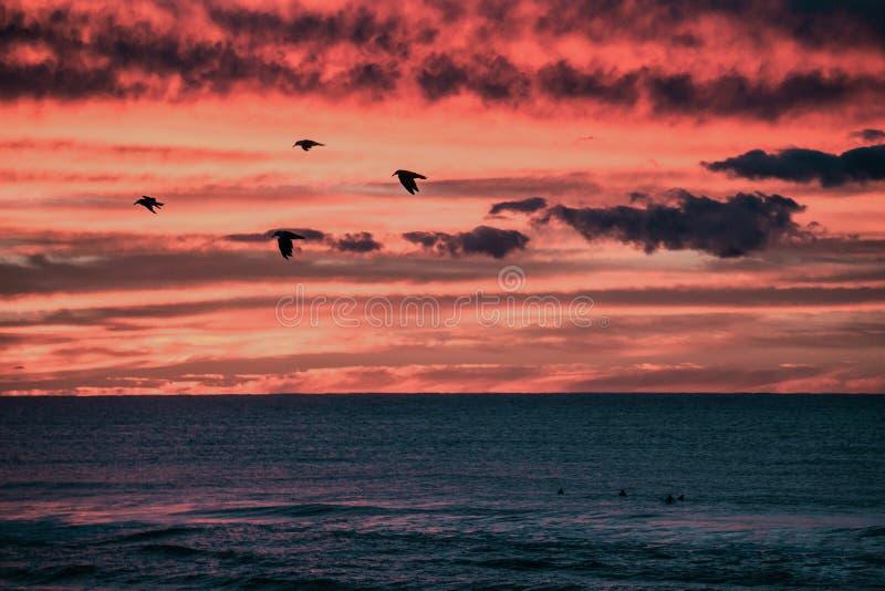 Заниматься серфингом компановка на восходе солнца стоковые изображения