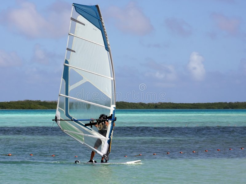 занимаясь серфингом ветер tropics стоковые изображения
