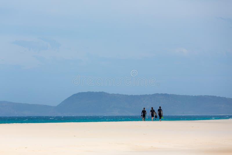 занимаясь серфингом время стоковая фотография rf