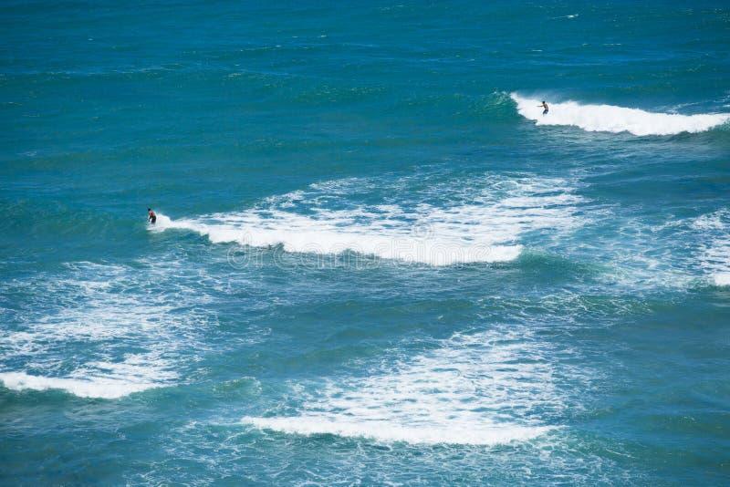 Занимаясь серфингом голова Hawai 001i диаманта стоковое изображение