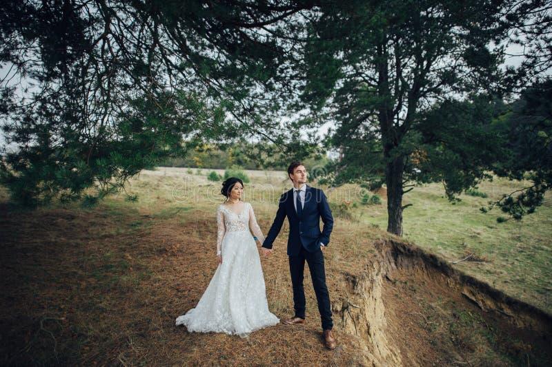 Заново wedded пары нежно целуя между елевыми деревьями стоковая фотография