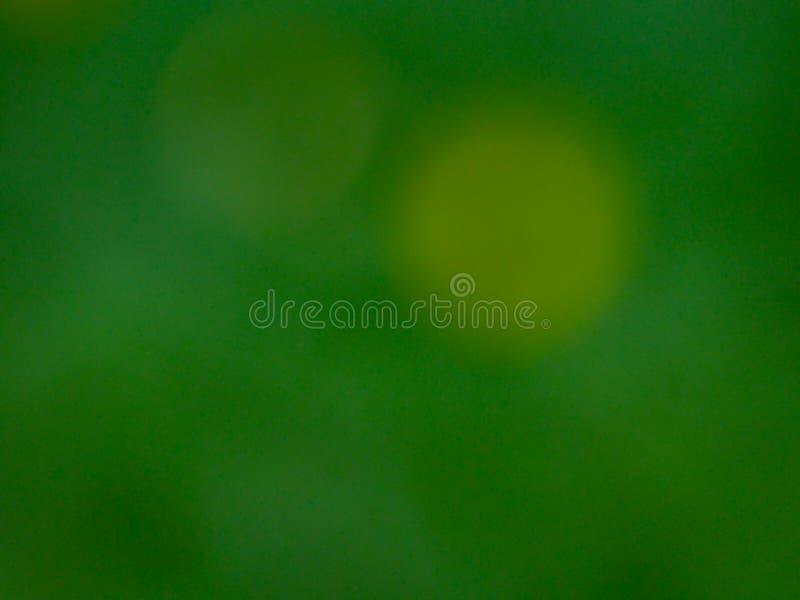 Запачканная предпосылка зеленого цвета природы стоковое фото
