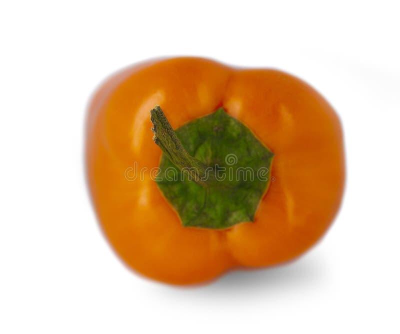 Запачканное и отборное изображение фокуса Оранжевый перец изолированный на белой предпосылке стоковая фотография rf