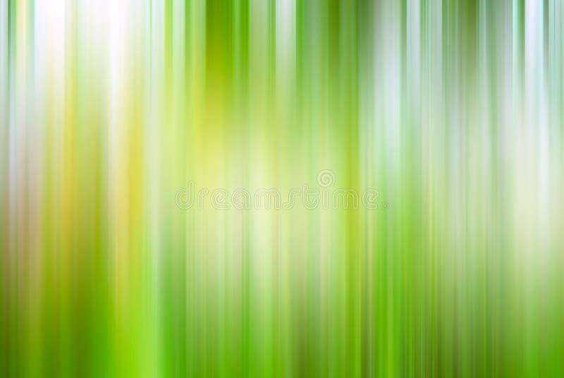 Запачканное конспектом зеленое лето весны предпосылки стоковая фотография