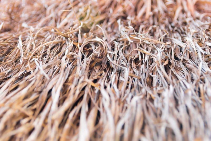 Запачканное сено стоковое фото