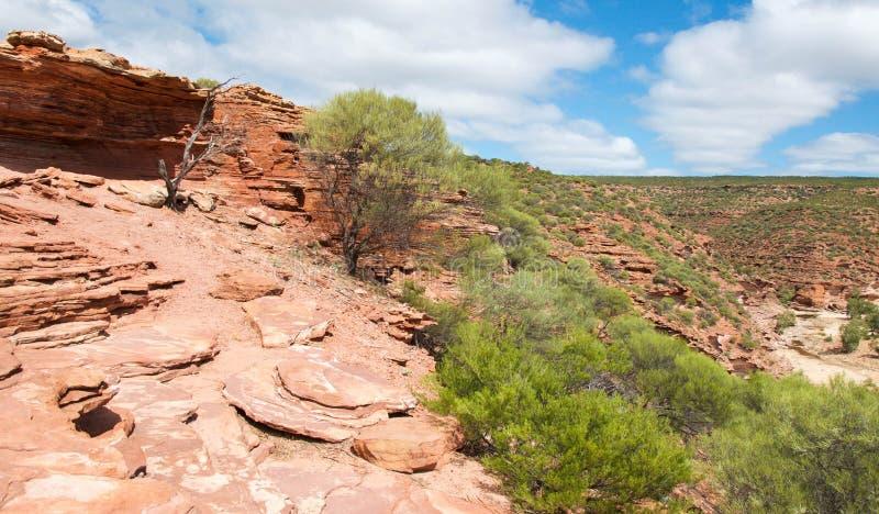 Западная Австралия: Скалы национального парка Kalbarri стоковое фото rf