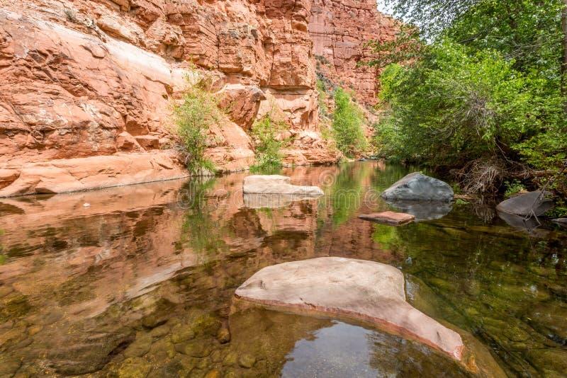 Западная ясная заводь Аризона весной стоковые фотографии rf