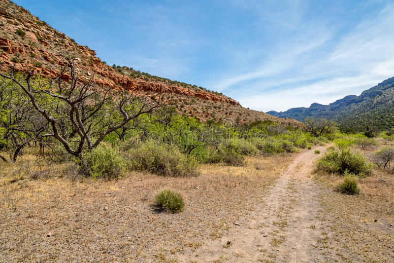 Западная ясная заводь Аризона стоковые фотографии rf