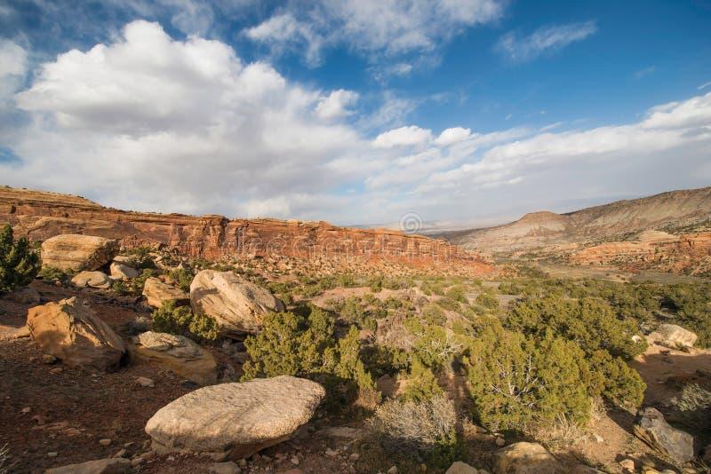 Западный ландшафт Колорадо стоковое изображение rf