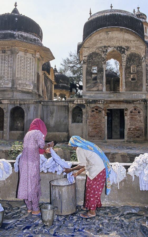 запиток Индии стоковые фото