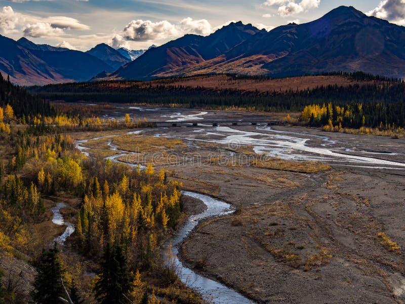 Заплетенное река в осени, национальный парк Denali, река Teklanika, горная цепь стоковое фото rf