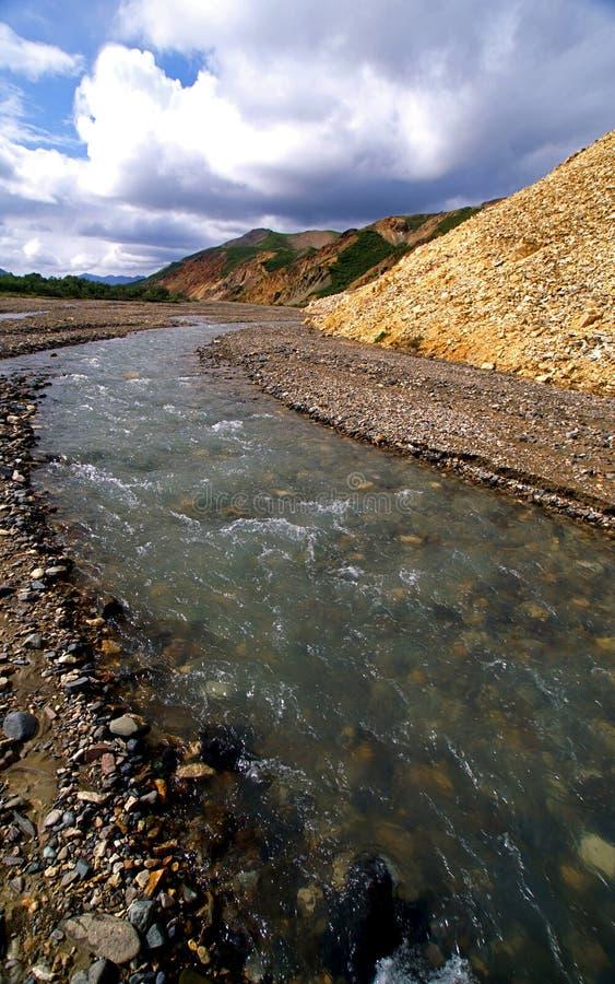 заплетенное река каньона стоковая фотография