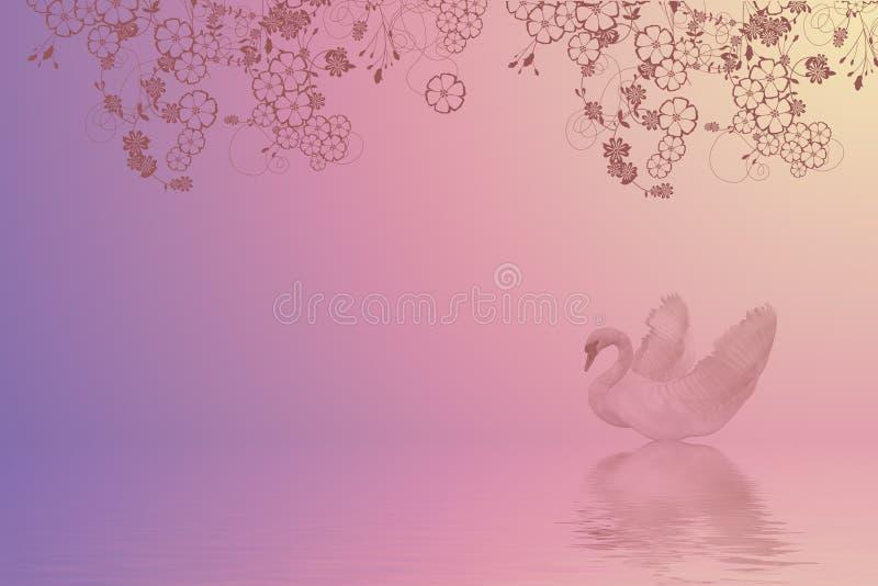 заплывание лебедя стоковая фотография rf