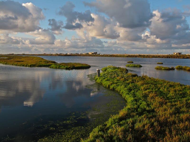 Заповедник & заболоченные места Bolsa Chica экологические в Huntington Beach, Калифорнии стоковые изображения