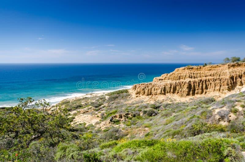 Заповедник положения сосен Torrey естественный - Калифорния стоковое изображение rf