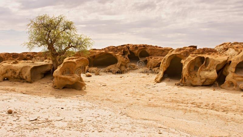 Заповедник Naukluft, пустыня Namib, Намибия стоковая фотография rf