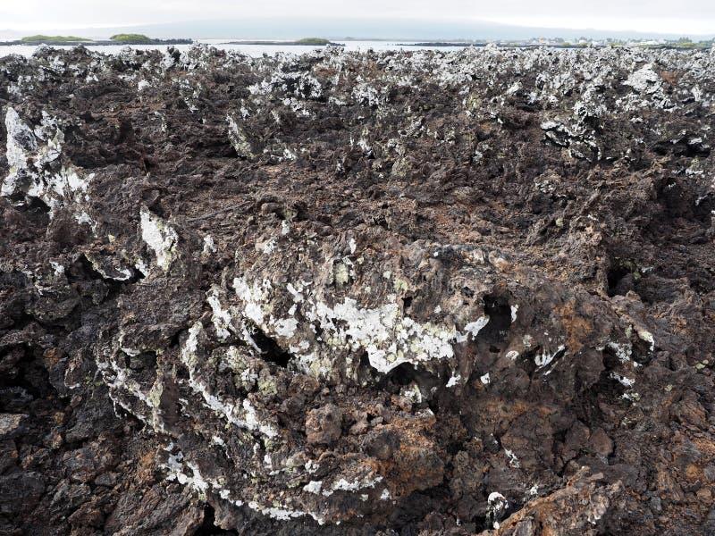 Заполненная лава на острове Islote Tintoreras чествует moonland, Галапагос, эквадор стоковая фотография rf