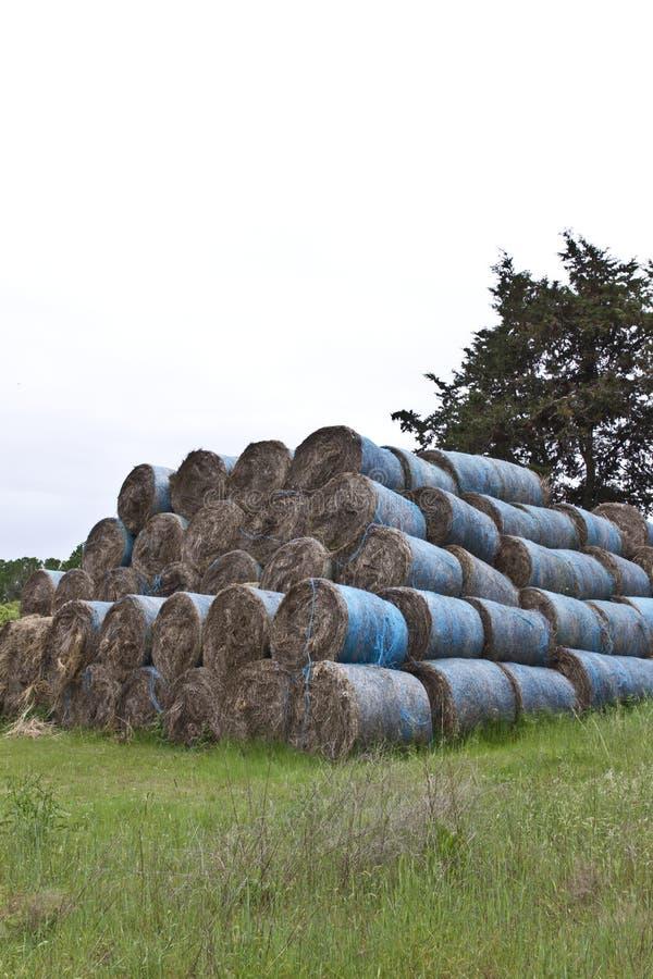 Заполненное сено стоковое изображение rf