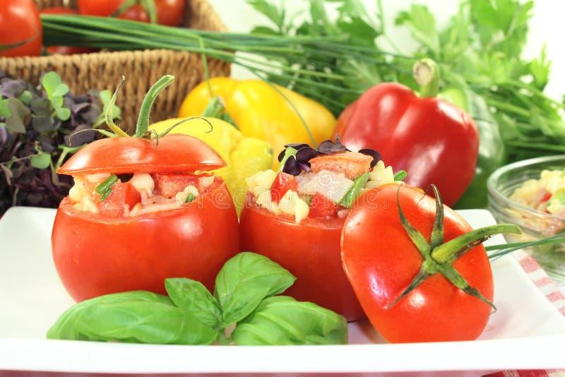 Заполненные томаты стоковые изображения