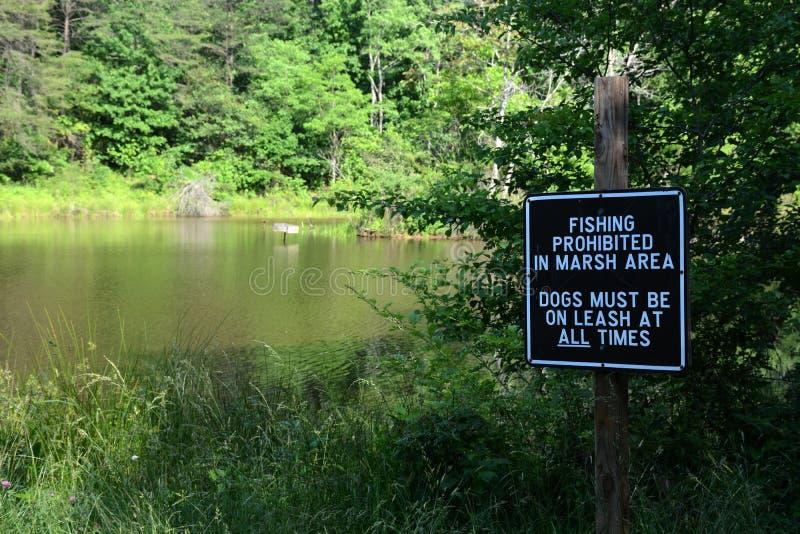 запрещенное рыболовство стоковая фотография rf