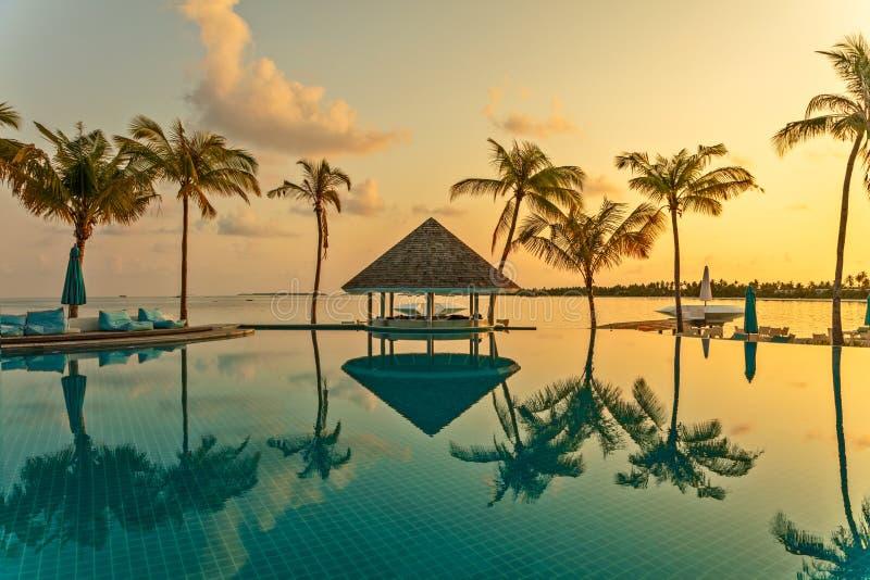 Заприте кафе и бассейн на тропическом пляже, окруженном пальмами стоковая фотография