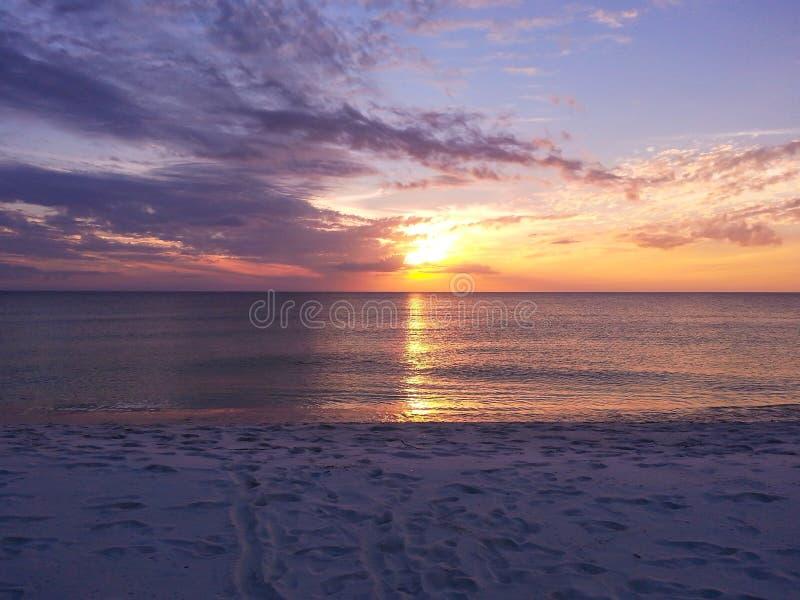 Запустелый пляж черепахи на побережье мексиканского залива Флориды стоковые изображения rf