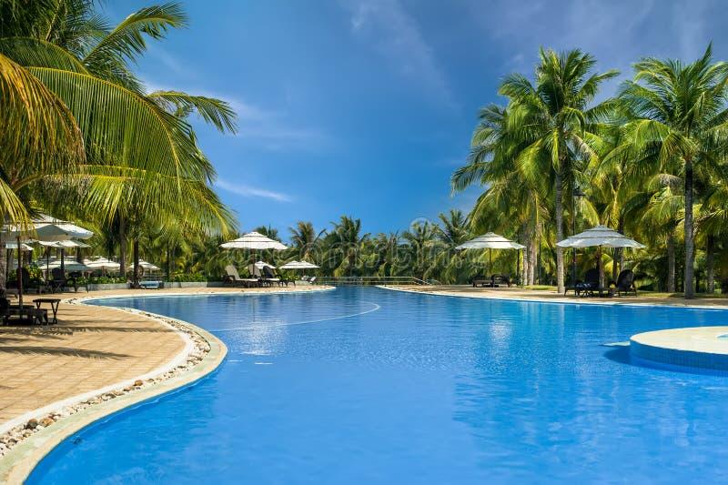 заплывание бассеина Мальдивов гостиницы тропическое ne Вьетнам mui стоковое фото rf