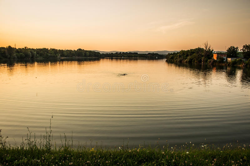 Заплыв захода солнца стоковое изображение rf