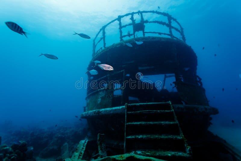 Заплыв рыб через остатки подводного кораблекрушения стоковая фотография rf