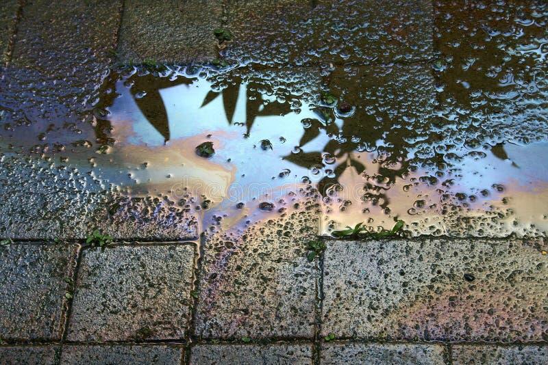 зараженная вода стоковая фотография