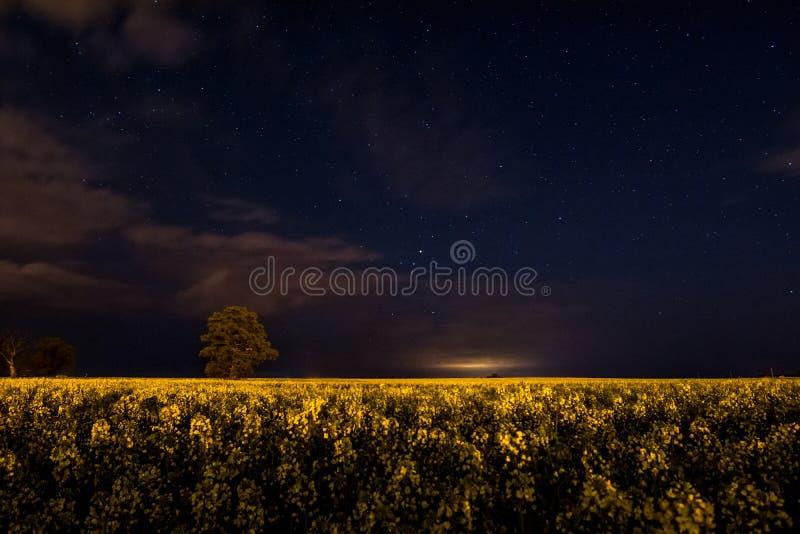 Зарево на ноче стоковая фотография