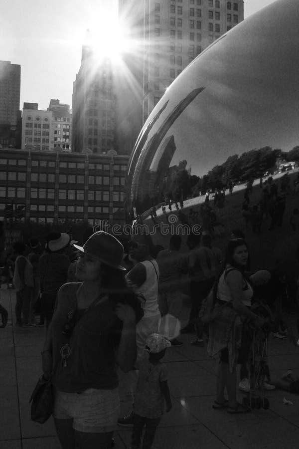Зарево света парка тысячелетия Чикаго стоковые изображения