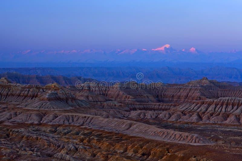 Заройте лес Geopark на восходе солнца в графстве Zhada, Тибете стоковое изображение rf