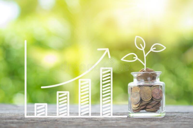 Засадите расти в монетках сбережений и растущая диаграмму на деревянном Inve стоковое фото