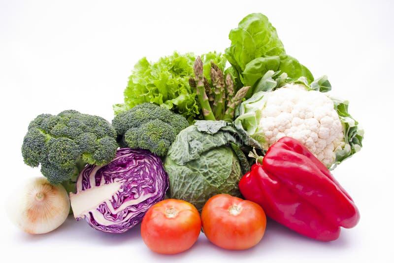 засаживает овощи стоковое изображение
