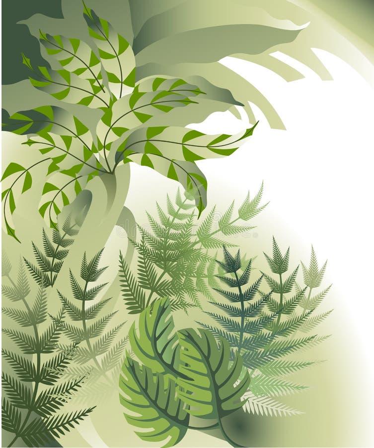 засаживает тропическое иллюстрация штока