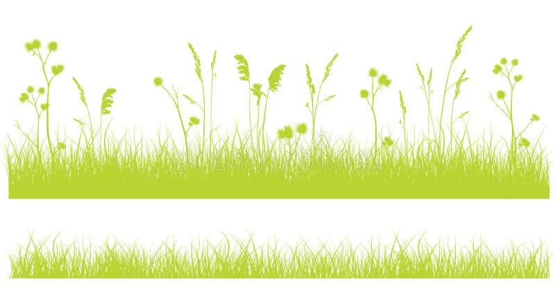Засевайте граница травой на белизне, monochrome зеленом плоском дизайне на белизне бесплатная иллюстрация