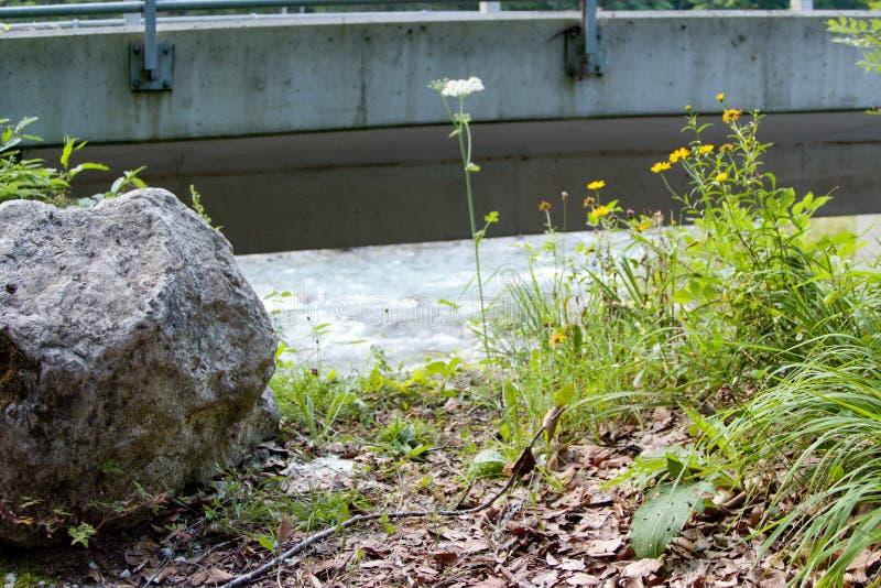 Засевайте травой и камень под конкретным мостом стоковое фото rf